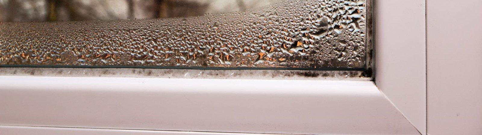 Kondenswasser am Fenster: das können Sie dagegen tun