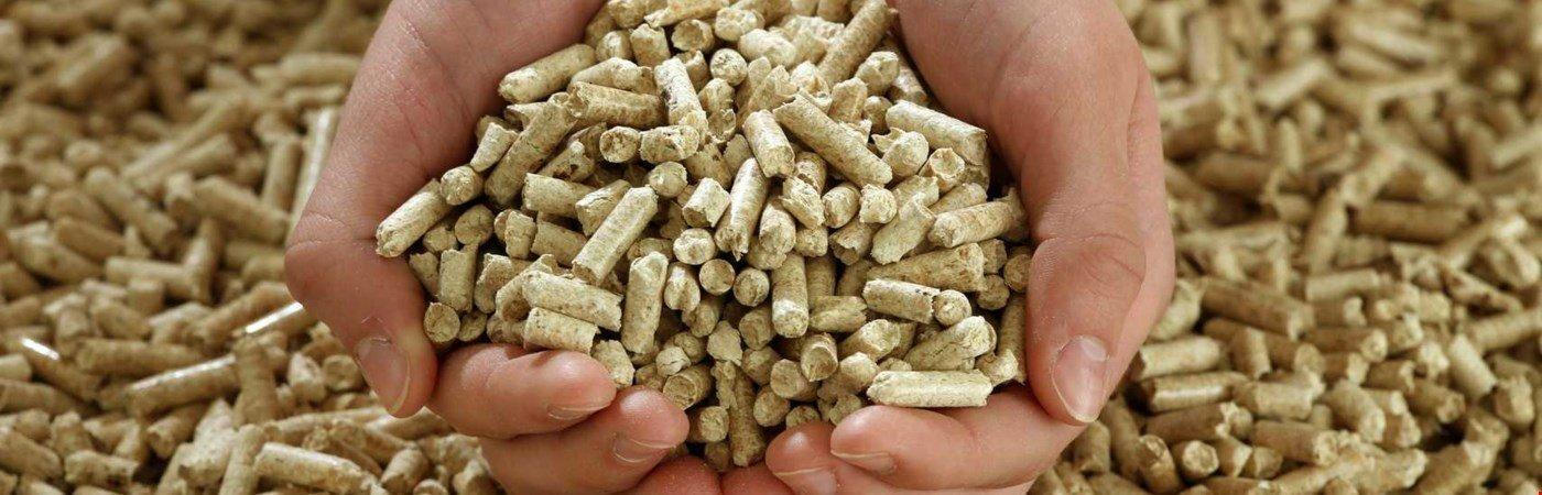 Pelletheizung kaufen und dauerhaft kostengünstig heizen