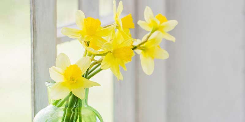 Im Frühling Heizung optimieren