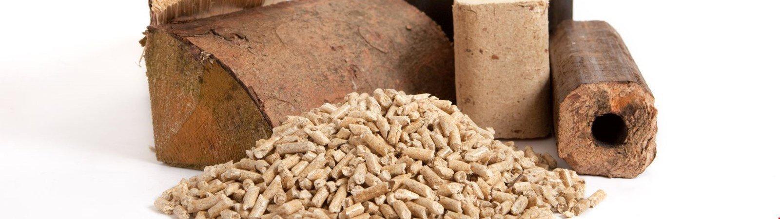 Kaminofen im Test: Heizen mit Scheitholz, Pellets und Briketts